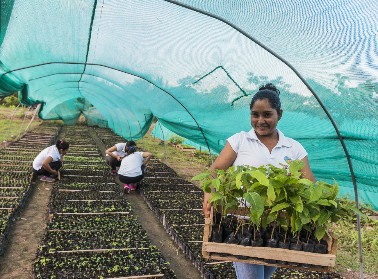A female plant nursery manager in a Fairtrade-certified cooperative in Peru