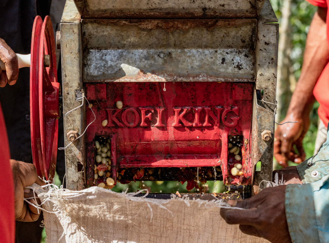 Red coffee pulping machine