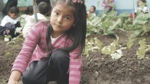 Children in veggie patch